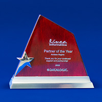 Partner of the year 2008