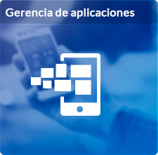 Outsourcing y gerencia de aplicaciones (Application Managment)