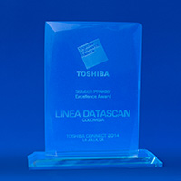 Solution Provider - Excellence Award Toshiba Commerce